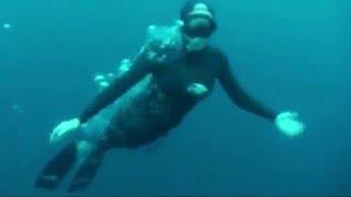 Karol Meyer mergulhando com Meros