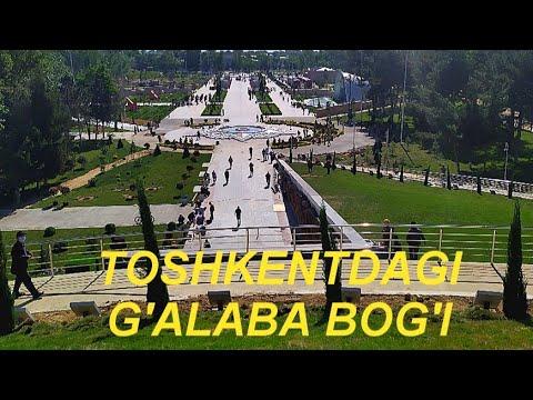 8-MAY TOSHKENT G'ALABA BOG'I