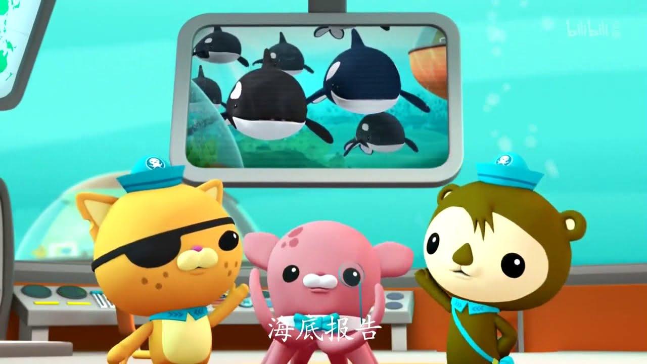 【海底小縱隊】S1 11:大虎鯨 - YouTube