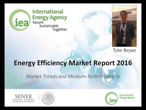 13. Energy Efficiency Market Report 2016