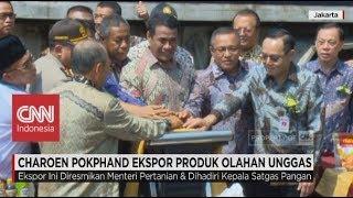 Indonesia Ekspor Daging Ayam Olahan ke Tiga Negara