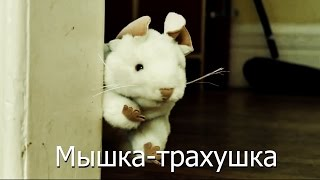 Мышка-трахушка
