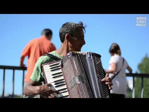 Street Accordionist from Romania in Paris, France
