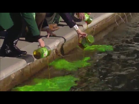 Greening of the downtown Indianapolis canal