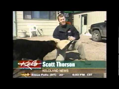 My surprise interview on KELO News