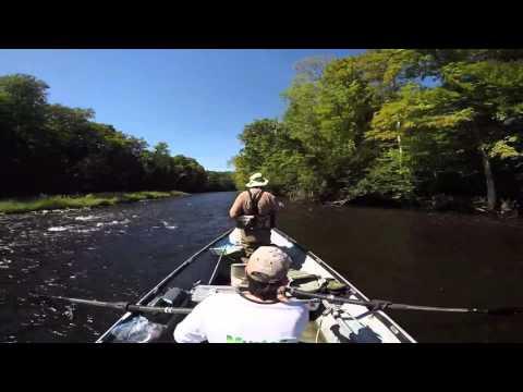 Guide Drift Boat Fishing Salmon River Pulaski NY Steelhead And Salmon