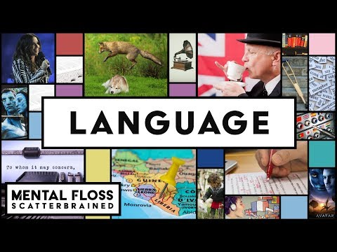 Everything You Need to Know About English and Other Languages!  Mental Floss Scatterbrained