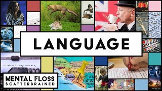 Everything You Need to Know About English and Other Languages! - Mental Floss Scatterbrained