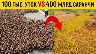 Вот зачем Китай создал 100-тысячную \