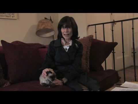 Cat Care & Behavior : How to Cope With Cat Allergies
