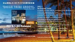 【杉山清貴&オメガトライブ】35周年記念盤『OMEGA TRIBE GROOVE』トレーラー