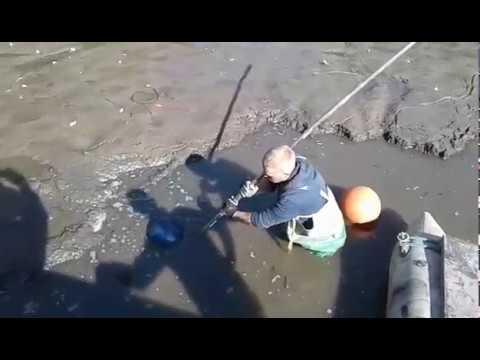 Очистка рыб отстойника от ила  мини земснарядом