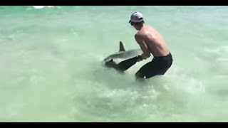 Brothers Save Hammerhead Shark Destin, FL 2015