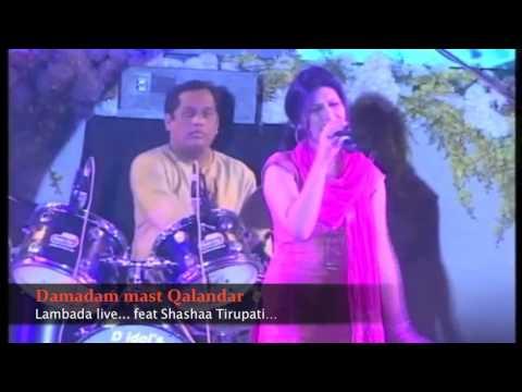 Damadam mast Qalandar Lambada live Feat Shashaa Tirupati