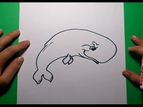 how to draw a blue whale youtube