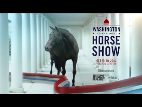Horse Power Comes to D.C. for the 2016 Washington International Horse Show