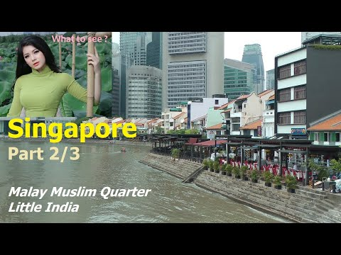 WHAT TO SEE in Singapore - Part 2 / 3