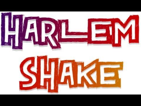 MISTER MAX - HARLEM SHAKE ! !
