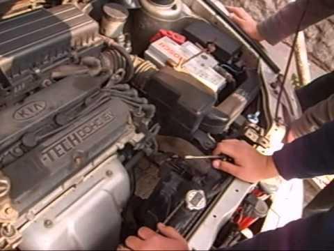 El cortacésped a gasolina automotriz que gasolina