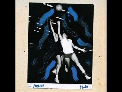 Ptaki - Przelot (2015) (FULL ALBUM)