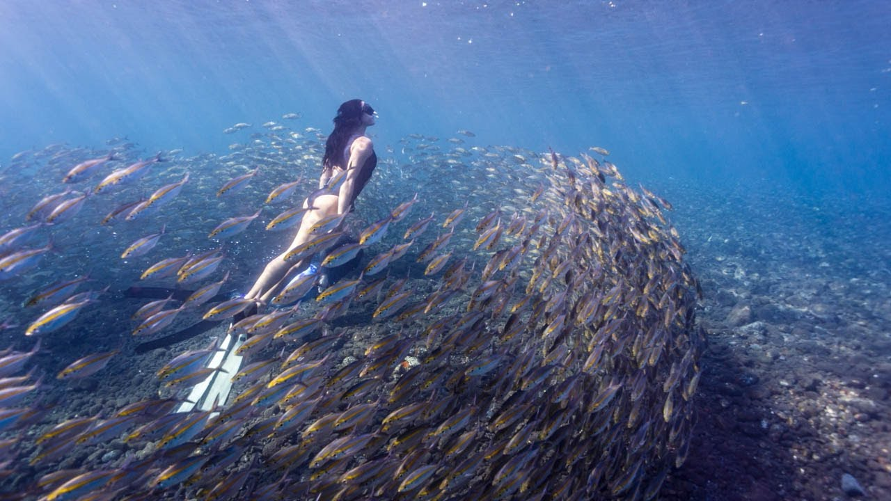 Real-Life Mermaid Swims In Deep Around Wreckages - YouTube