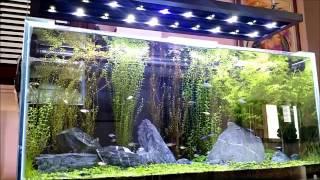 Luminária de leds caseira para aquários com 200w