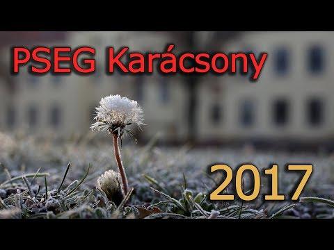 PSEG Karácsonyi videó - 2017.12.22.