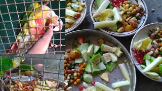 conures breeding time best food