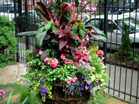 Tu Bloom Garden Landscape Designs