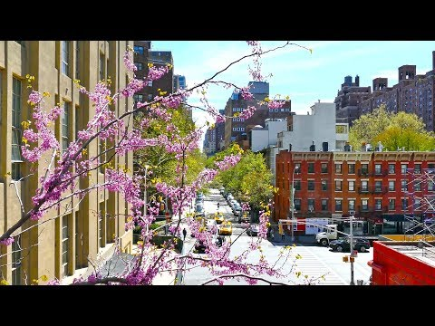 Streets of New York City, Manhattan Walk, 4K video