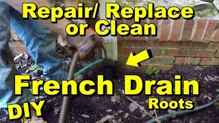French Drain, How To Clean, Repair, Replace, Corrugated Pipe with Roots