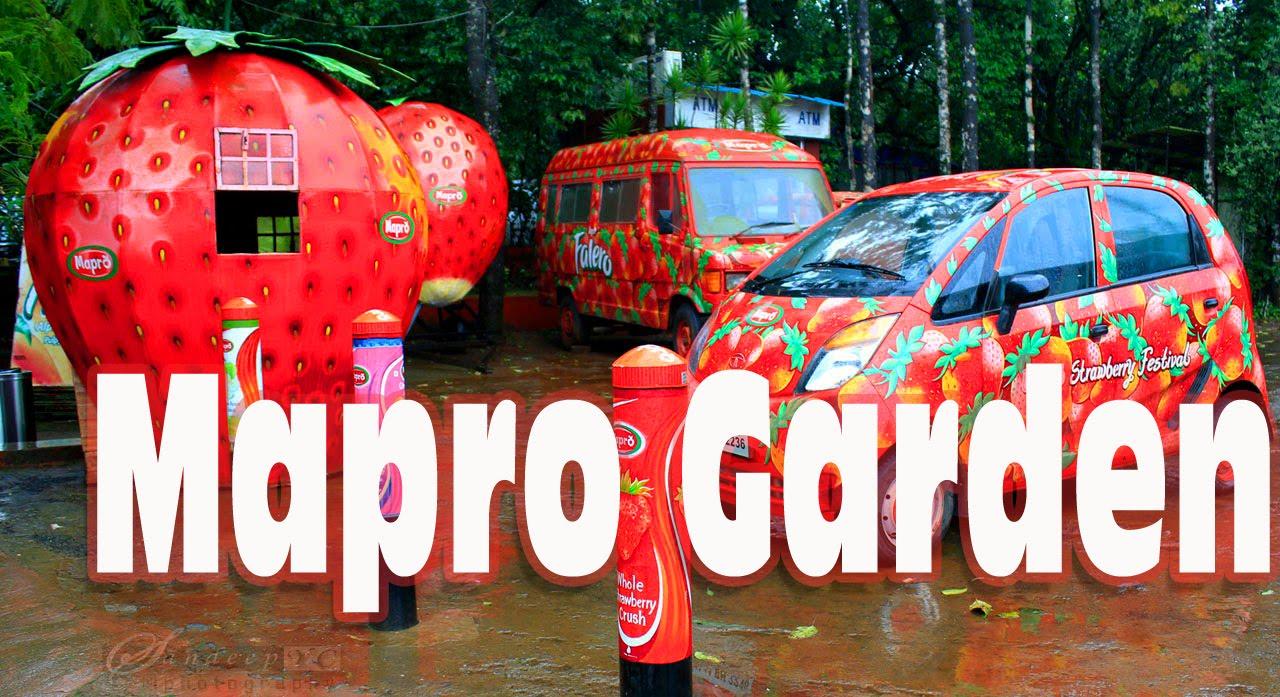 Mapro Foods Market Share