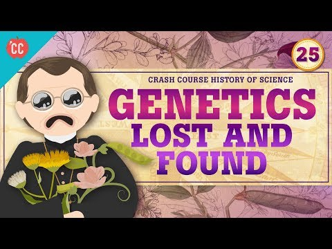 Genetics  Lost and Found: Crash Course History of Science #25