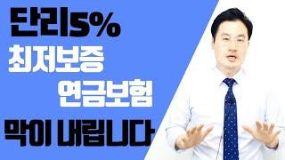 [보험의방주]단리5%최…