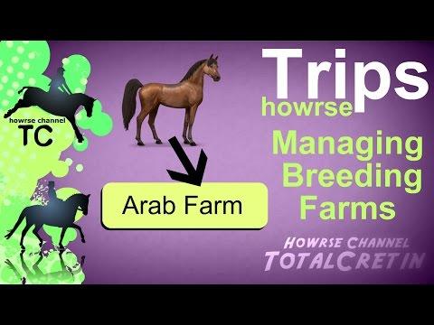 Managing Breeding Farms - Howrse Trips