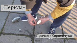 Рыбалка на перилах Корнейчука Карась пошел 1 МАЯ 21 г Запорожье