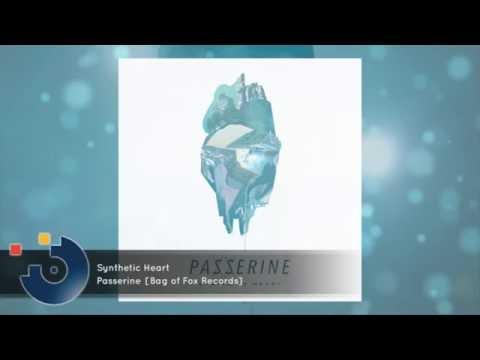 Passerine - Synthetic Heart [FULL SONG]