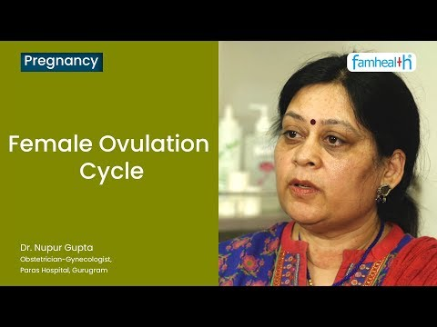 Doctor opinion | Understanding the Female Ovulation Cycle - Dr. Nupur Gupta | Famhealth