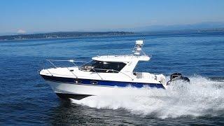 """""""Arrowcat 32 RS For Sale"""""""