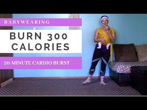 BURN 300 Calories In 20 Minutes Babywearing Cardio Workout  | Fitness For Mamas