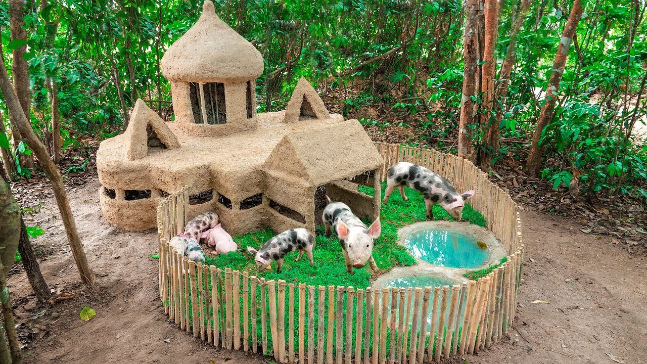 Build Most Wonderful Pig House And Swimming Pool For Pigs