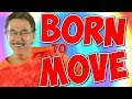 Born to Move   Fun Movement Song for Kids   Brain Breaks   Jack Hartmann