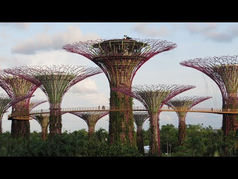 Gardens By The Bay Singapore Complete Walkthrough 2017
