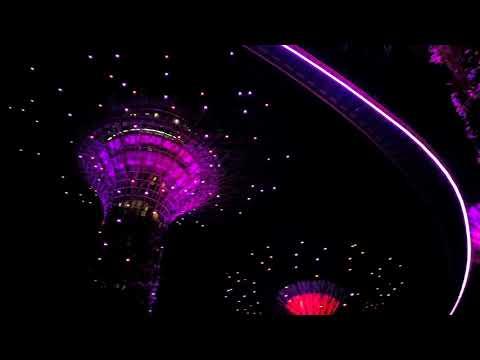 Supertree Light Show Singapore