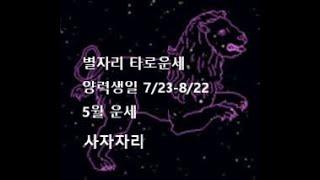 별자리 타로운세:  사자자리 (7/23-8/22)  5월 운세