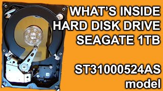 INSIDE OF HARD DRIVE? Seagate ST31000524AS 1Tb