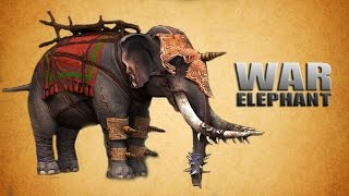 War History Of Ancient India : WAR ELEPHANT