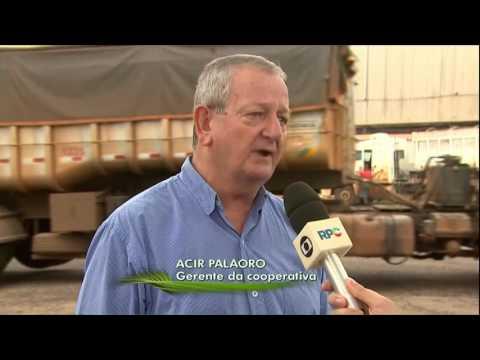 Paraná e Mato Grosso têm problemas para escoamento da soja