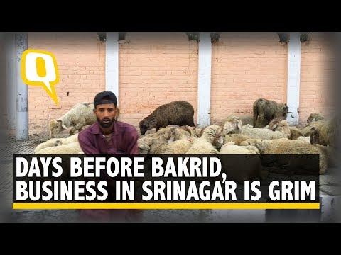Days Before Bakrid, Business in Srinagar is Grim   The Quint