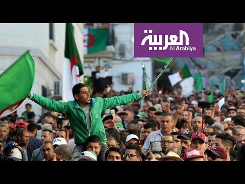 تفاعلكم | صراع بين مقاطعي الانتخابات الجزائر ومؤيديها  - نشر قبل 2 ساعة